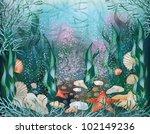 underwater world  background.... | Shutterstock .eps vector #102149236