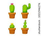 set cactus plant with flower on ... | Shutterstock .eps vector #1021546276