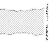 torn hole in sheet of white... | Shutterstock .eps vector #1021550512