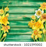 daffodils flowers on the wooden ... | Shutterstock .eps vector #1021595002