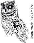 hand drawn vector owl | Shutterstock .eps vector #102174472
