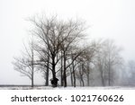 winter thick forest in a thick... | Shutterstock . vector #1021760626