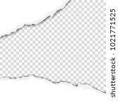 ragged wide strip in sheet of... | Shutterstock .eps vector #1021771525