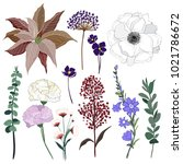 set of summer wild  floral... | Shutterstock .eps vector #1021786672