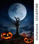 zombie hands rising in dark... | Shutterstock . vector #1021839388