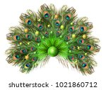 peacock feathers. carnival.... | Shutterstock . vector #1021860712