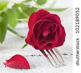 fork with red rose - stock photo