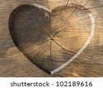 Heart Shape Carved On A Tree Cut