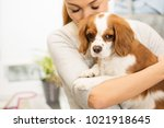 cropped horizontal shot of a...   Shutterstock . vector #1021918645