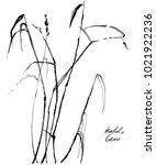 nifty gentle hand drawn... | Shutterstock .eps vector #1021922236