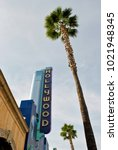 a sign and palm tree in... | Shutterstock . vector #1021948345