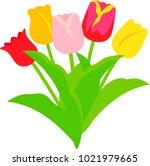 Various Tulip Bouquets