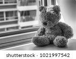 Monochrome Bear Toy Sitting By...