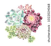watercolor hand drawn... | Shutterstock . vector #1022024068
