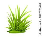 green grass  vector   Shutterstock .eps vector #1022098648