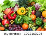 tropical fresh fruits and... | Shutterstock . vector #1022163205