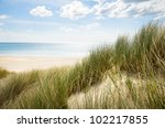 Sunny Beach With Sand Dunes And ...