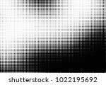 halftone pattern black and... | Shutterstock .eps vector #1022195692
