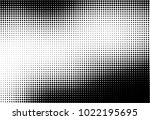 halftone pattern black and... | Shutterstock .eps vector #1022195695