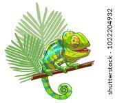green cartoon chameleon is...