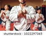 Martial Arts Fighters Hone...