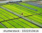 modern agriculture innovation... | Shutterstock . vector #1022313616