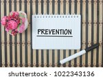 artificial bonsai marker pen... | Shutterstock . vector #1022343136