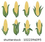 collection of corn ear images | Shutterstock .eps vector #1022396095