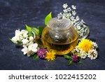 aromatic flower tea in a teapot ... | Shutterstock . vector #1022415202