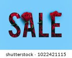 sale brilliant poster  banner ... | Shutterstock . vector #1022421115