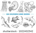 seafood or sea creature... | Shutterstock .eps vector #1022432542