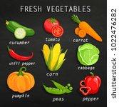 set of fresh vegetables.... | Shutterstock . vector #1022476282