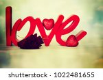 flowers with word love | Shutterstock . vector #1022481655