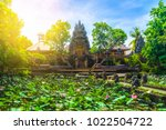 amazing view of pond with lotus ...   Shutterstock . vector #1022504722