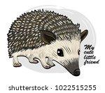 vector urchin. little hedgehog. | Shutterstock .eps vector #1022515255