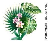 realistic detailed vector... | Shutterstock .eps vector #1022515702