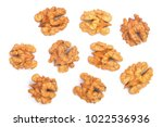 walnut kernels isolated on... | Shutterstock . vector #1022536936