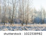 winter morning with frosted... | Shutterstock . vector #1022538982