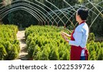 senior woman gardener or seller ...   Shutterstock . vector #1022539726