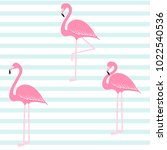 pink flamingo on stripe pattern ... | Shutterstock .eps vector #1022540536