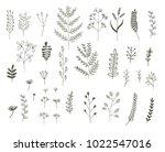 vector set of vegetative... | Shutterstock .eps vector #1022547016