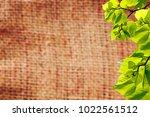 old beige burlap texture... | Shutterstock . vector #1022561512