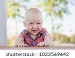 boy 9 months is at the table... | Shutterstock . vector #1022569642