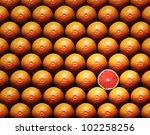 Grapefruit Slice Amongst Many...