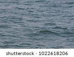 sea waves with sun light... | Shutterstock . vector #1022618206