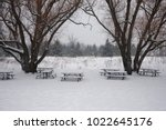 Snow Covered Picnic Benches In...