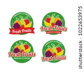 fresh fruits logo design vector ... | Shutterstock .eps vector #1022653975