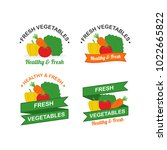fresh vegetables logo design... | Shutterstock .eps vector #1022665822