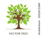 tree logo art isolated on white ... | Shutterstock .eps vector #1022672368