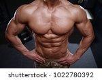 sexy strong bodybuilder... | Shutterstock . vector #1022780392
